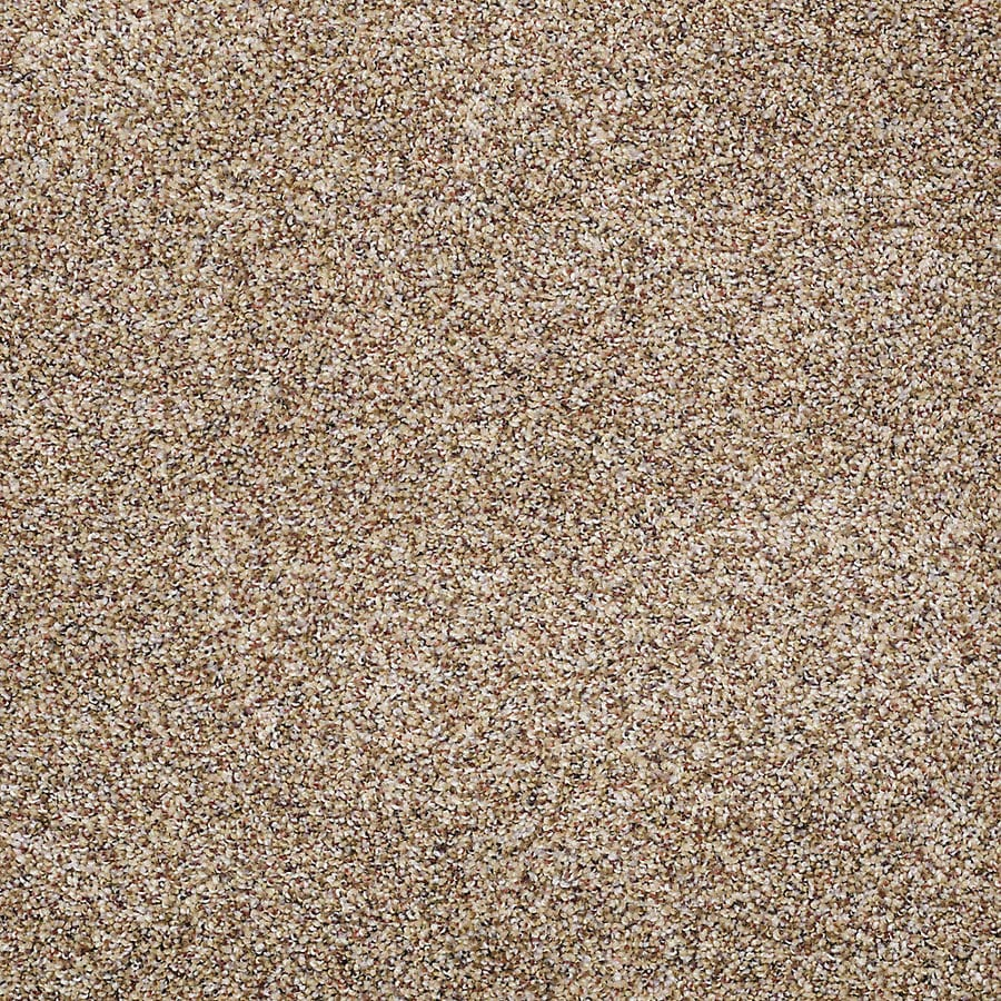 STAINMASTER Petprotect Shameless II Grand Canyon Textured Indoor Carpet