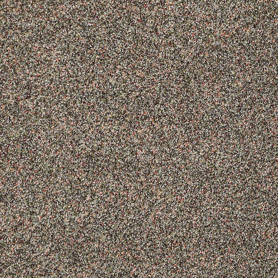 STAINMASTER PetProtect Shameless II Timberline Textured Interior Carpet