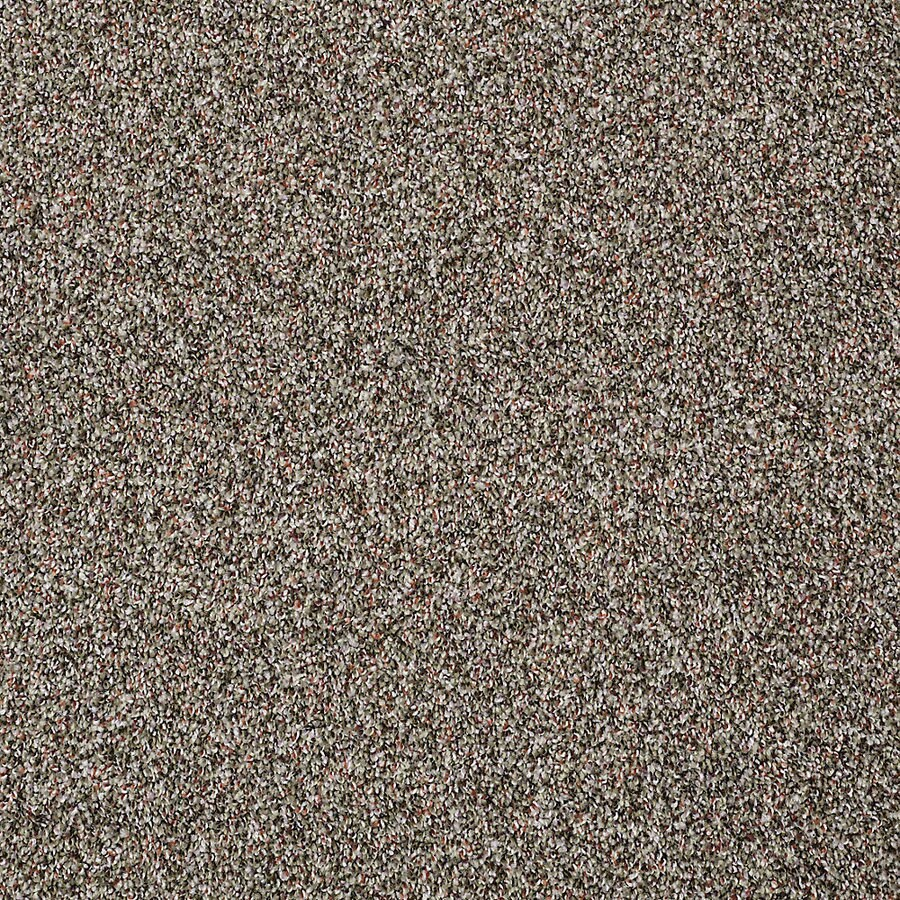 STAINMASTER PetProtect Shameless II 12-ft W x Cut-to-Length Velvet Night Textured Interior Carpet