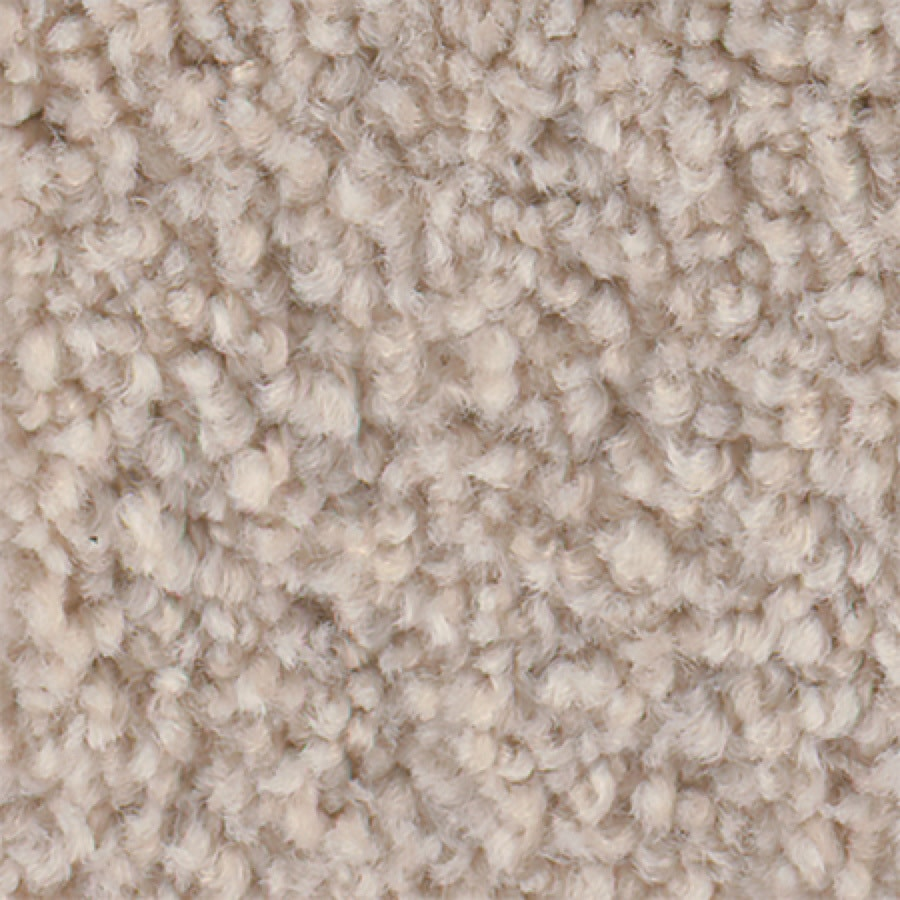 STAINMASTER Active Family with Lifeguard Wade Pool I Raw Milk Textured Interior Carpet