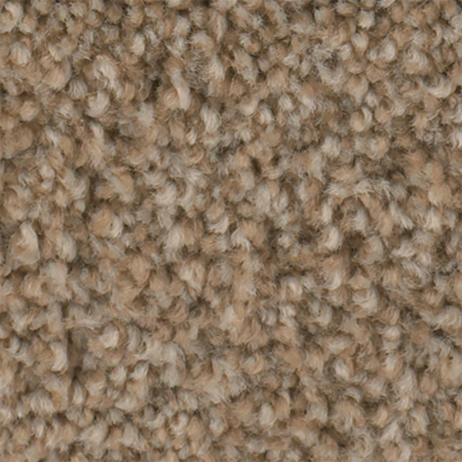 STAINMASTER Active Family with LifeGuard Wade Pool I 12-ft W x Cut-to-Length Beige Glow Textured Interior Carpet