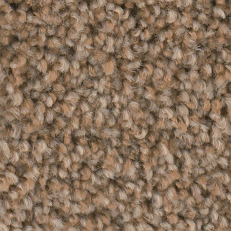 STAINMASTER Active Family with LifeGuard Wade Pool I 12-ft W x Cut-to-Length Wet Sand Textured Interior Carpet