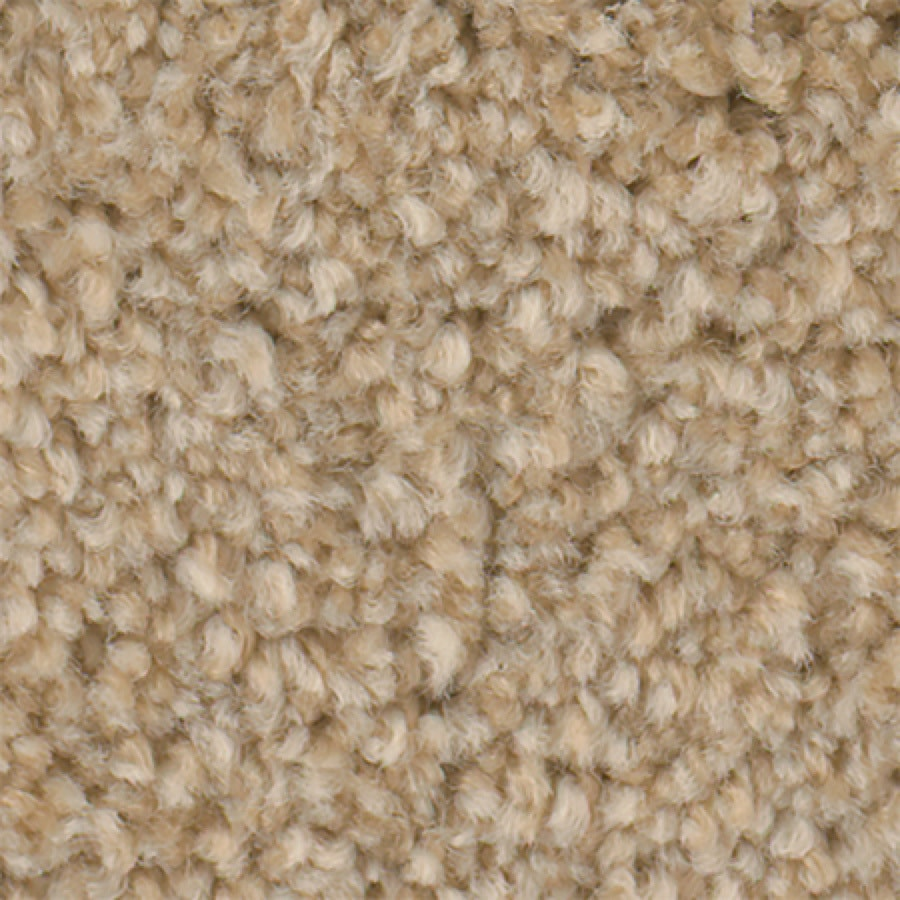 STAINMASTER Active Family with LifeGuard Wade Pool II 12-ft W x Cut-to-Length Peanut Shell Textured Interior Carpet