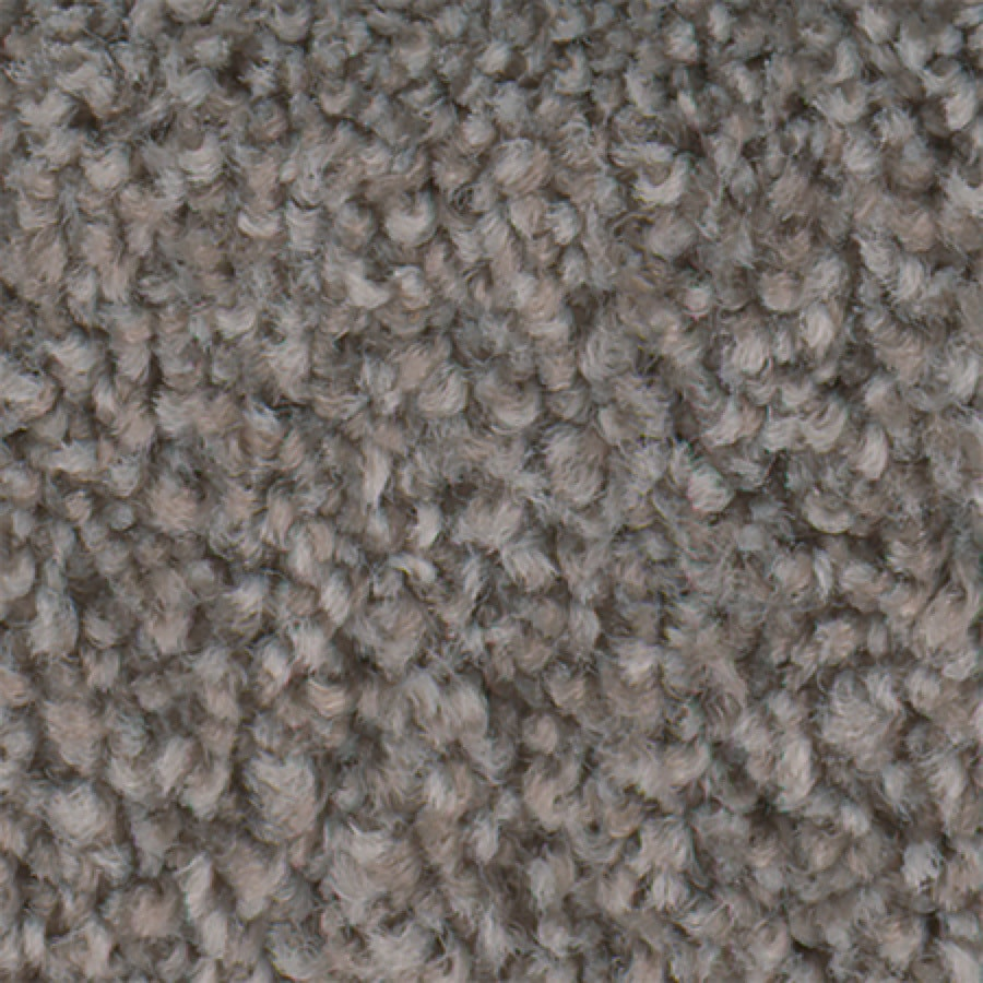 STAINMASTER Active Family with LifeGuard Wade Pool II Cobblestone Textured Indoor Carpet