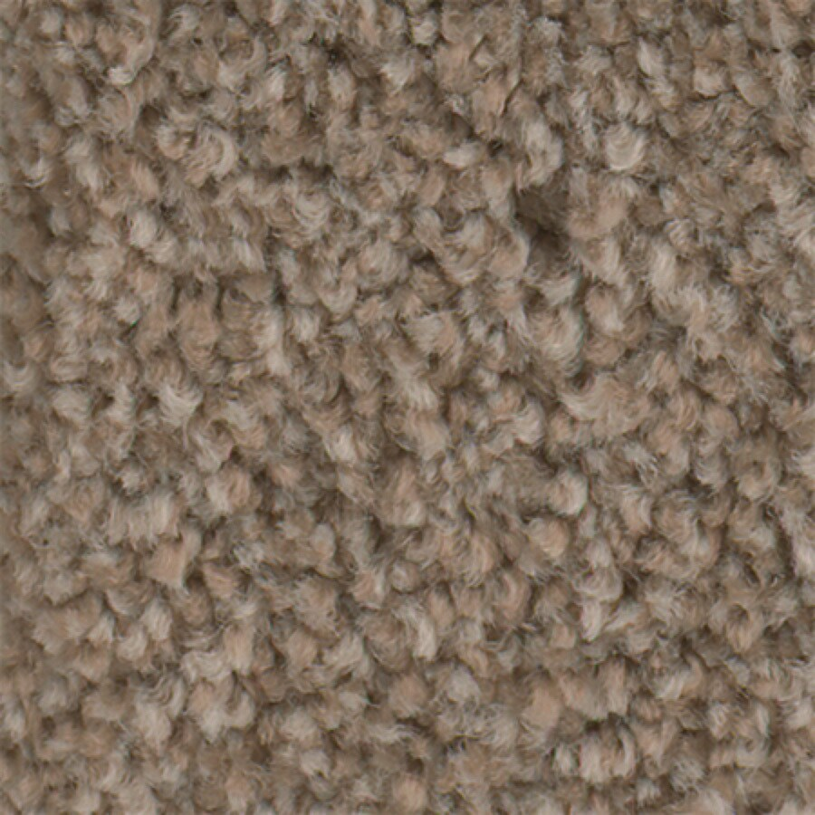 STAINMASTER Active Family With LifeGuard Wade Pool II 12-ft W Veneer Textured Interior Carpet