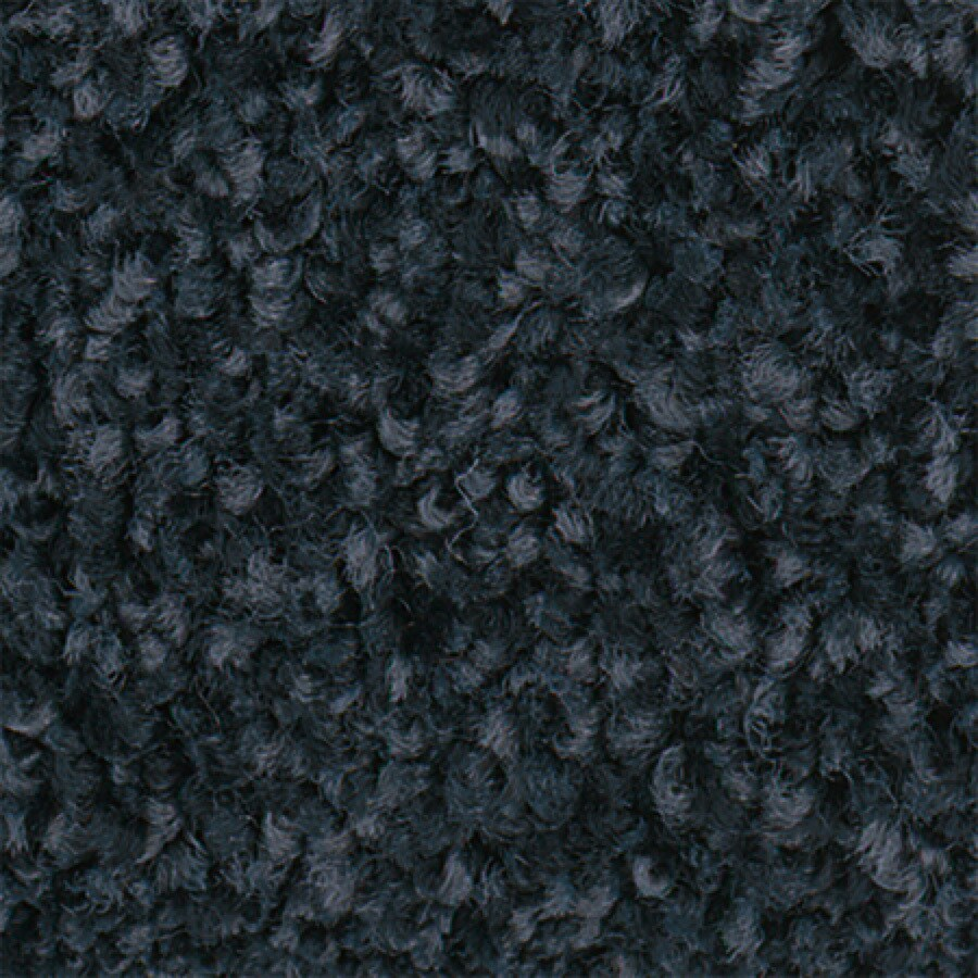 STAINMASTER Active Family with LifeGuard Water Taxi II 12-ft W x Cut-to-Length Moody Blue Textured Interior Carpet