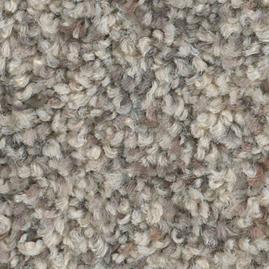 STAINMASTER Active Family with LifeGuard Water Tower II 12-ft W x Cut-to-Length Oyster Pearl Textured Interior Carpet
