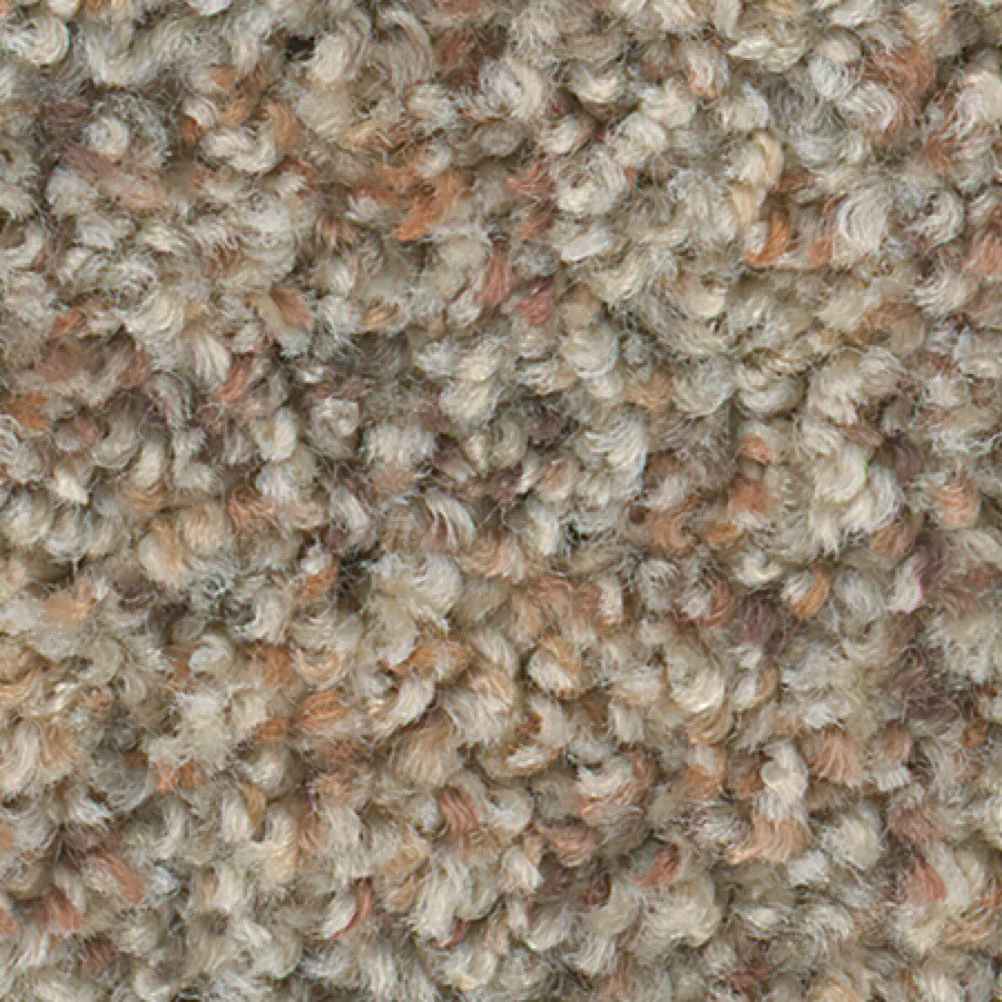 STAINMASTER Active Family with Lifeguard Water Tower Almond Brittle Textured Indoor Carpet