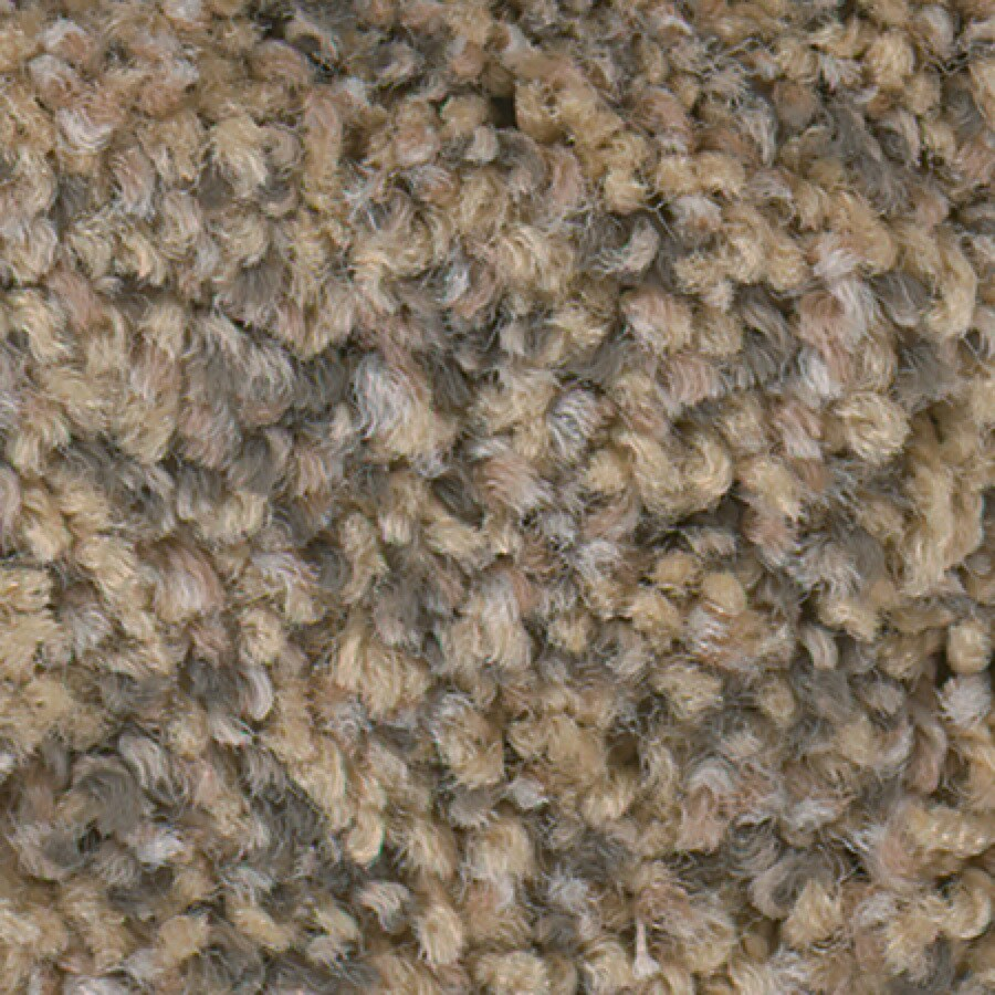 STAINMASTER Active Family with Lifeguard Splash City Pecan Sandie Textured Indoor Carpet