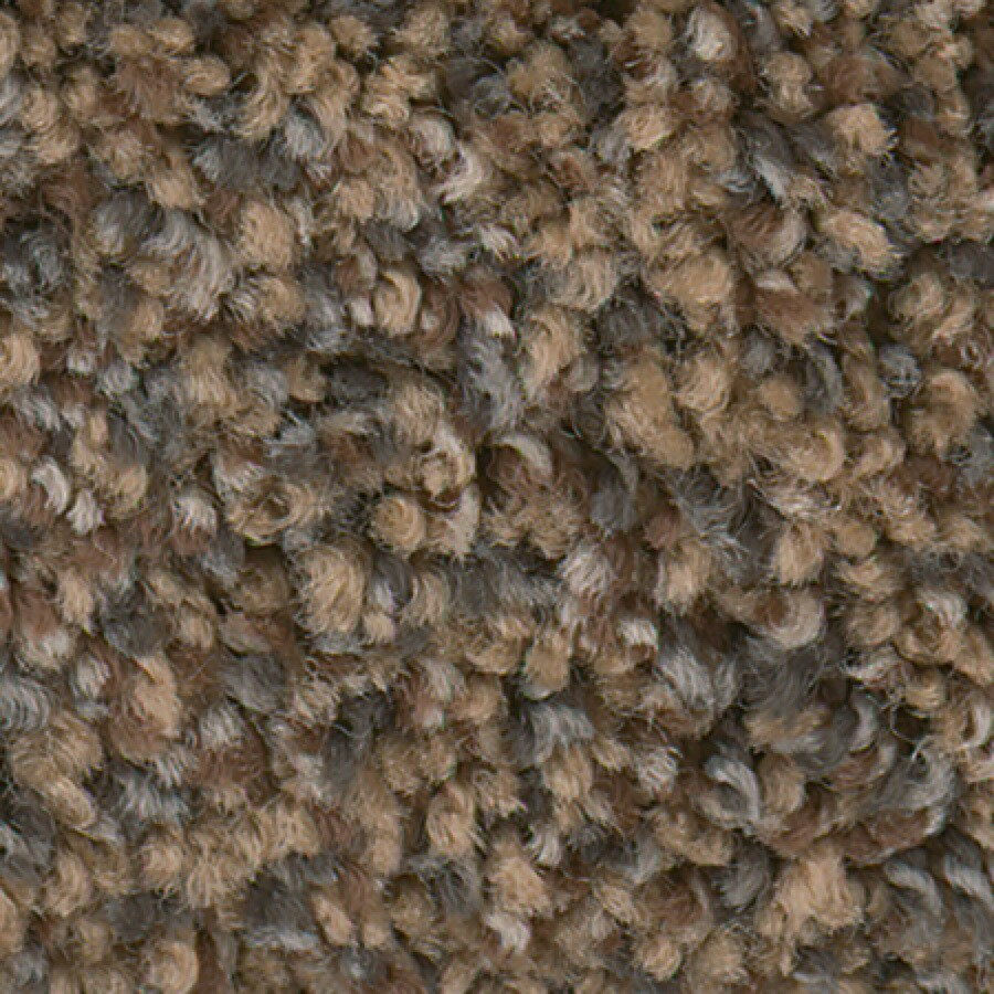 STAINMASTER Active Family with LifeGuard Splash City I 12-ft W x Cut-to-Length Rich Pine Textured Interior Carpet