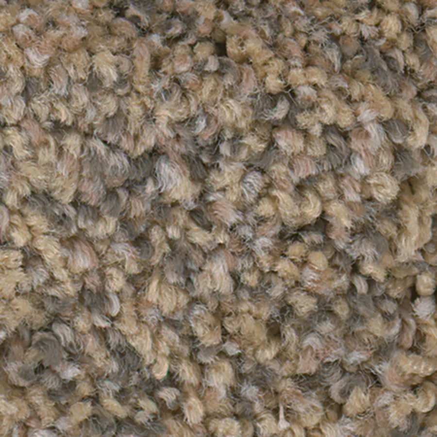 STAINMASTER Active Family with LifeGuard Splash City II 12-ft W x Cut-to-Length Pecan Sandie Textured Interior Carpet