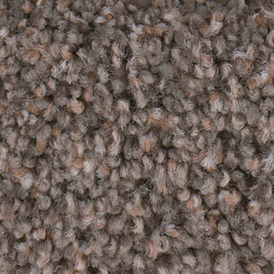 STAINMASTER Active Family with LifeGuard Splash City II 12-ft W x Cut-to-Length Barn Owl Textured Interior Carpet