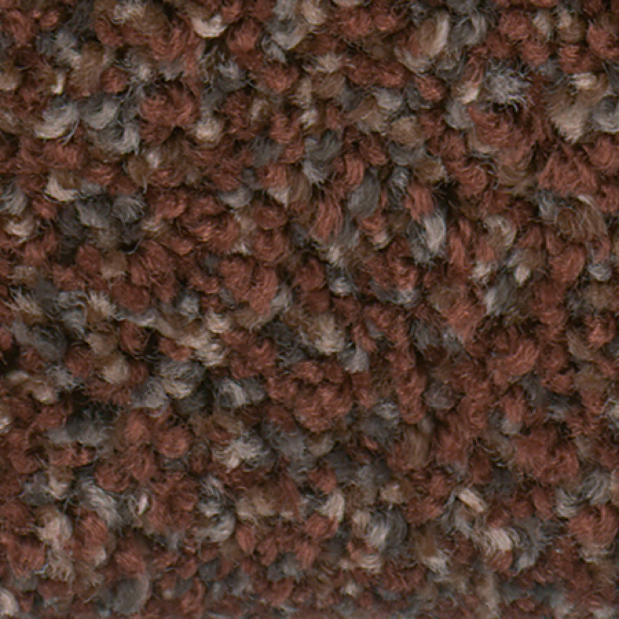 STAINMASTER Active Family with Lifeguard Splash City Aged Copper Textured Indoor Carpet
