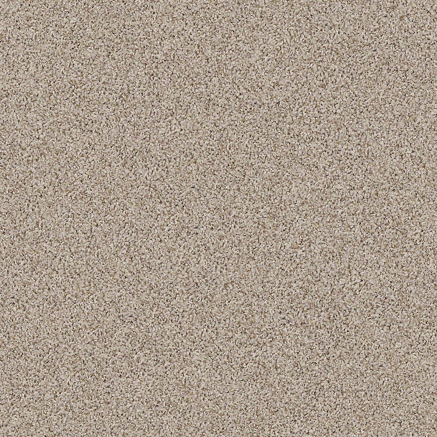 STAINMASTER Active Family with LifeGuard Waterville I 12-ft W x Cut-to-Length Timber Textured Interior Carpet