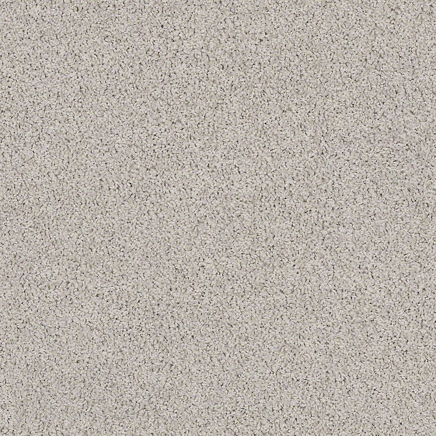 STAINMASTER Active Family with LifeGuard Waterville I Concrete Mix Textured Interior Carpet