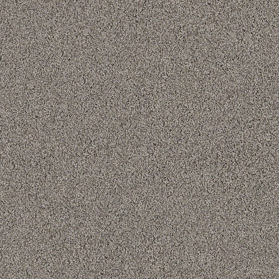 STAINMASTER Active Family with LifeGuard Waterville I Weeping Willow Textured Interior Carpet