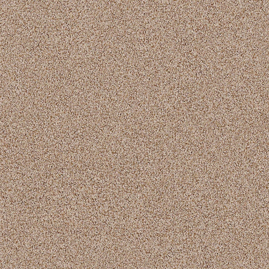 STAINMASTER Active Family with LifeGuard Waterville I 12-ft W x Cut-to-Length Wood Grain Textured Interior Carpet