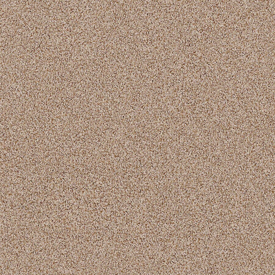 STAINMASTER Active Family with LifeGuard Waterville I Wood Grain Textured Interior Carpet