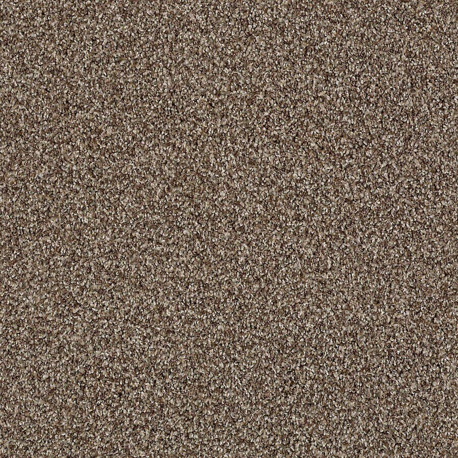 STAINMASTER Active Family with LifeGuard Waterville I Nature Trail Textured Interior Carpet
