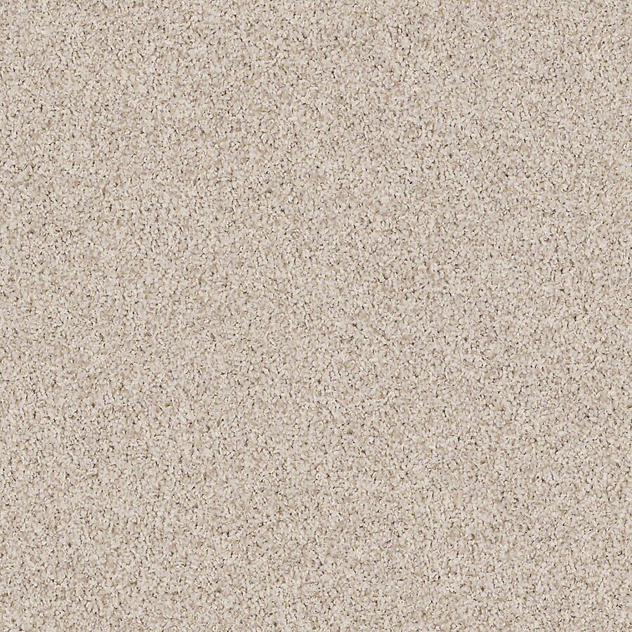 STAINMASTER Active Family with LifeGuard Waterville II 12-ft W x Cut-to-Length Oyster Textured Interior Carpet