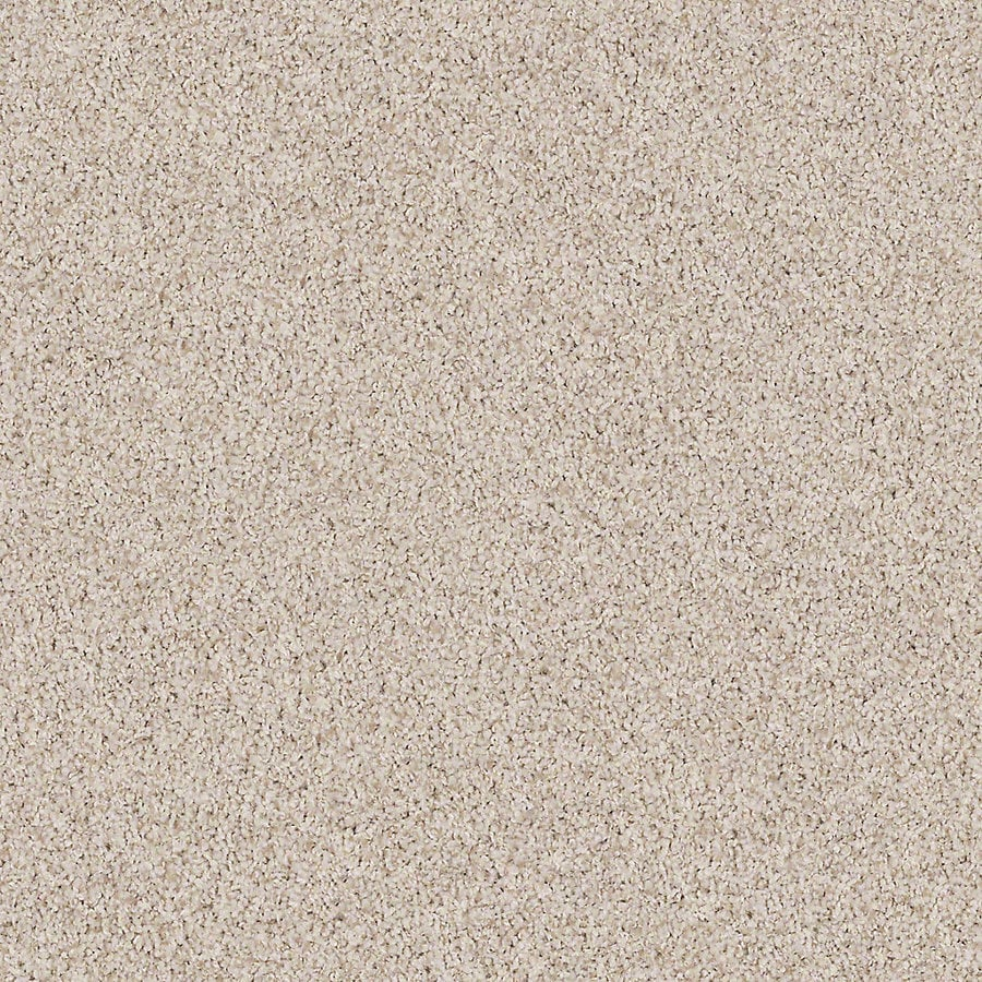 STAINMASTER Active Family with LifeGuard Waterville II Oyster Textured Interior Carpet