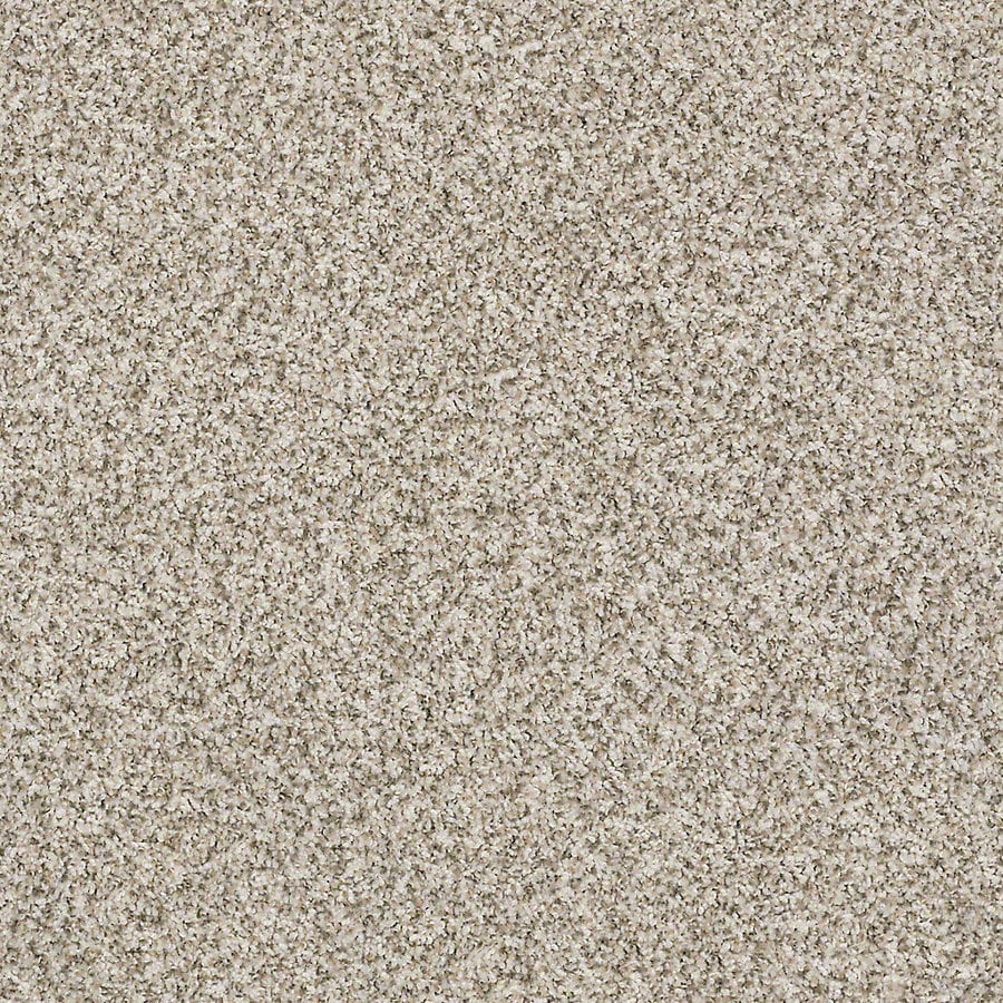 STAINMASTER Active Family with LifeGuard Waterville II 12-ft W x Cut-to-Length Farmhouse Textured Interior Carpet