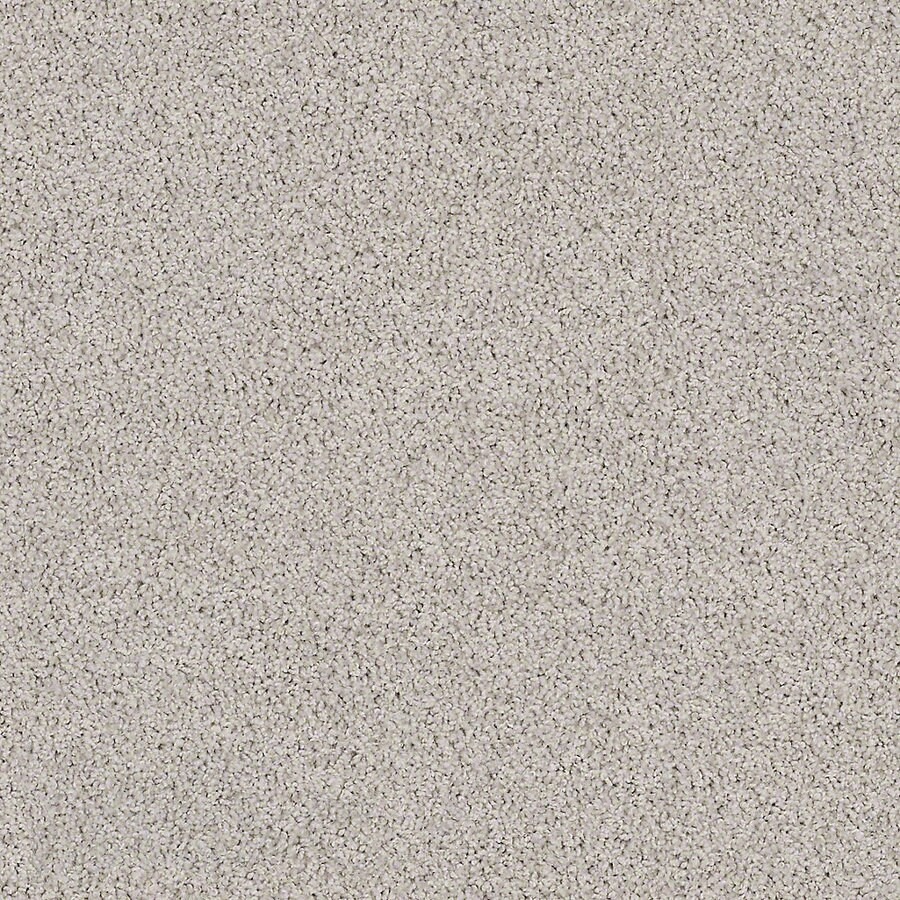 STAINMASTER Active Family with LifeGuard Waterville II Concrete Mix Textured Interior Carpet