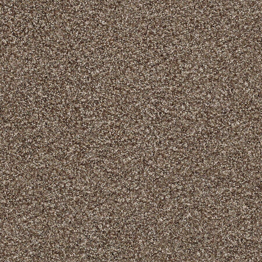 STAINMASTER Active Family with LifeGuard Waterville II 12-ft W x Cut-to-Length Nature Trail Textured Interior Carpet