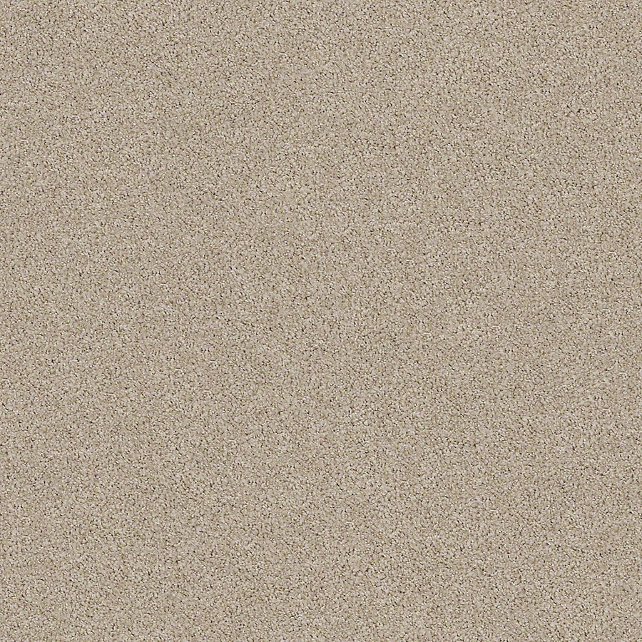 STAINMASTER LiveWell Breathe Easy I 12-ft W x Cut-to-Length Oyster Textured Interior Carpet