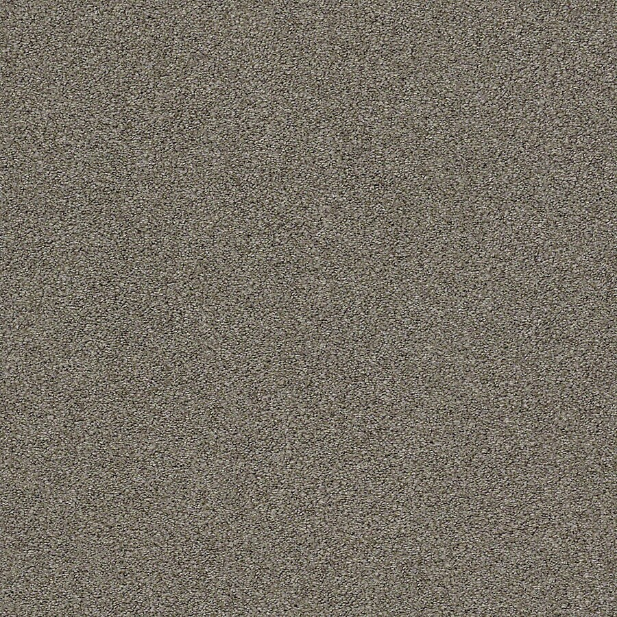 STAINMASTER LiveWell Breathe Easy I Mushroom Textured Interior Carpet