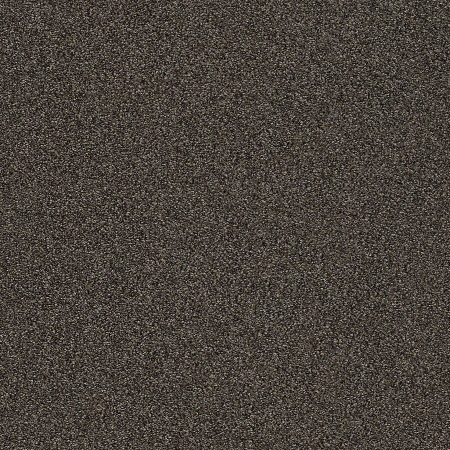STAINMASTER LiveWell Breathe Easy I Rich Soil Textured Interior Carpet