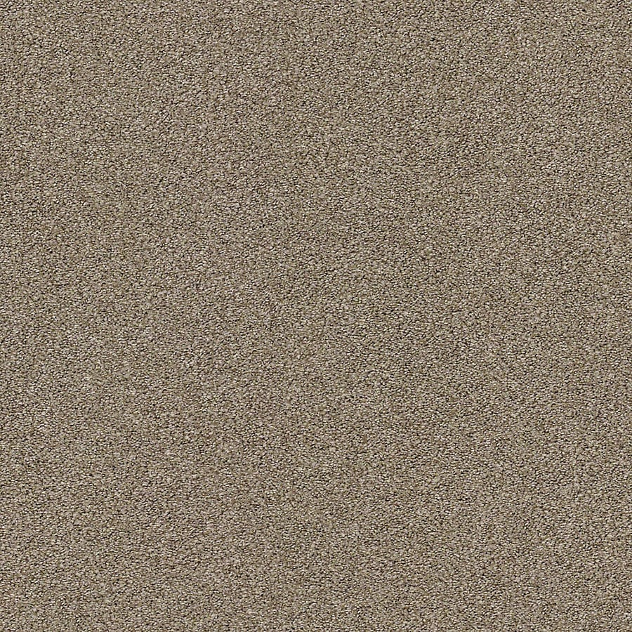 STAINMASTER LiveWell Breathe Easy I 12-ft W x Cut-to-Length Racoon Hollow Textured Interior Carpet