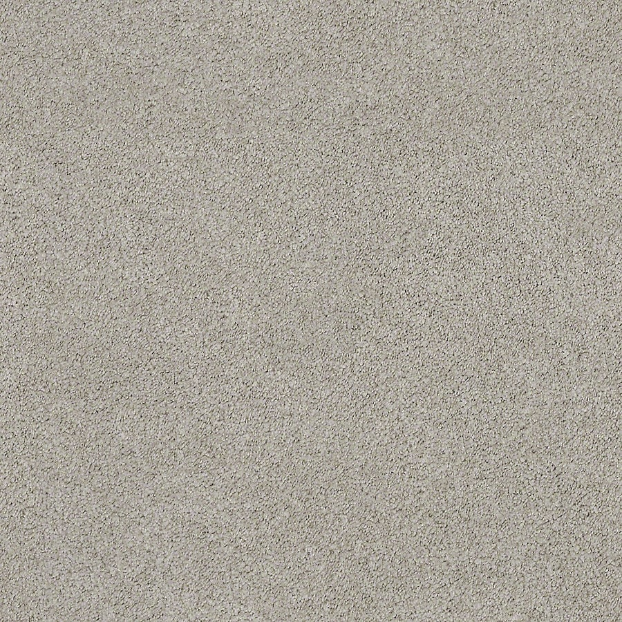 STAINMASTER LiveWell Breathe Easy II Air Stream Textured Interior Carpet