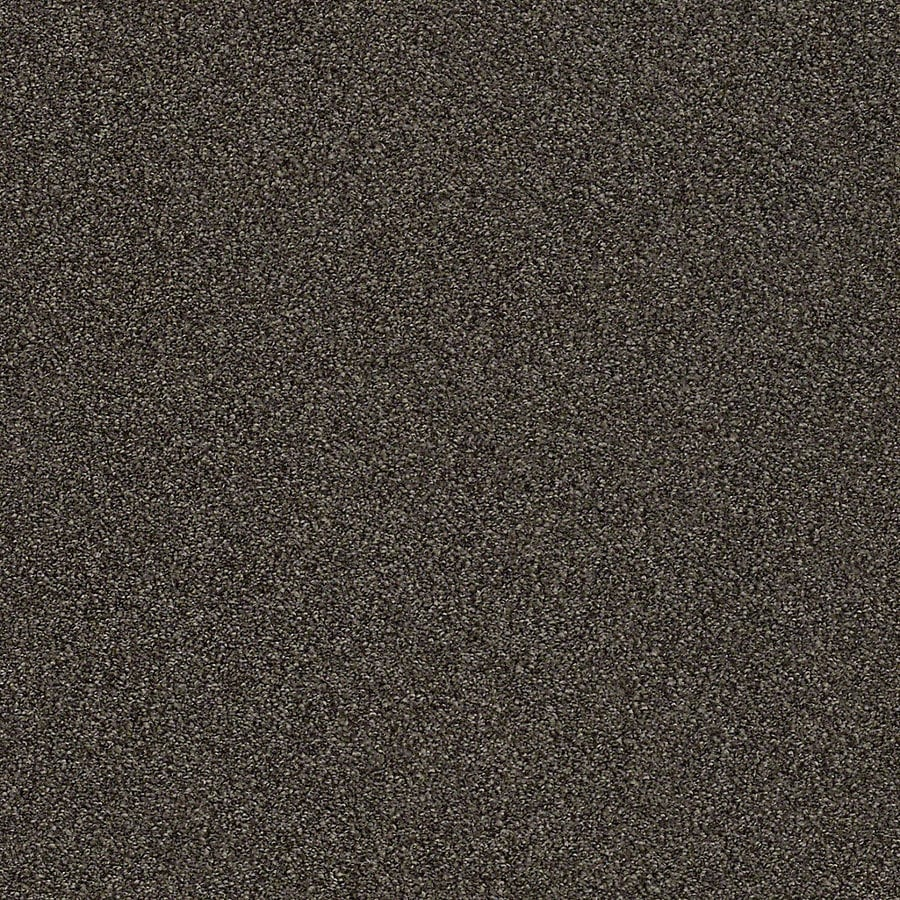 STAINMASTER LiveWell Breathe Easy II Rich Soil Textured Interior Carpet