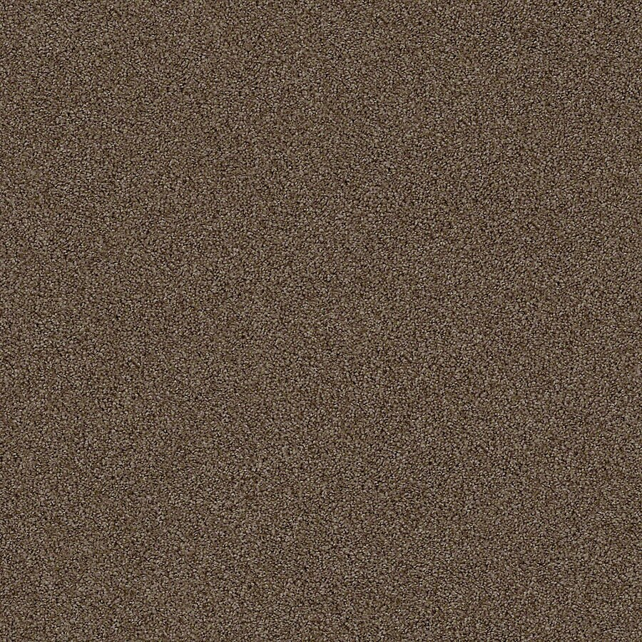 STAINMASTER LiveWell Breathe Easy II Syrup Textured Interior Carpet