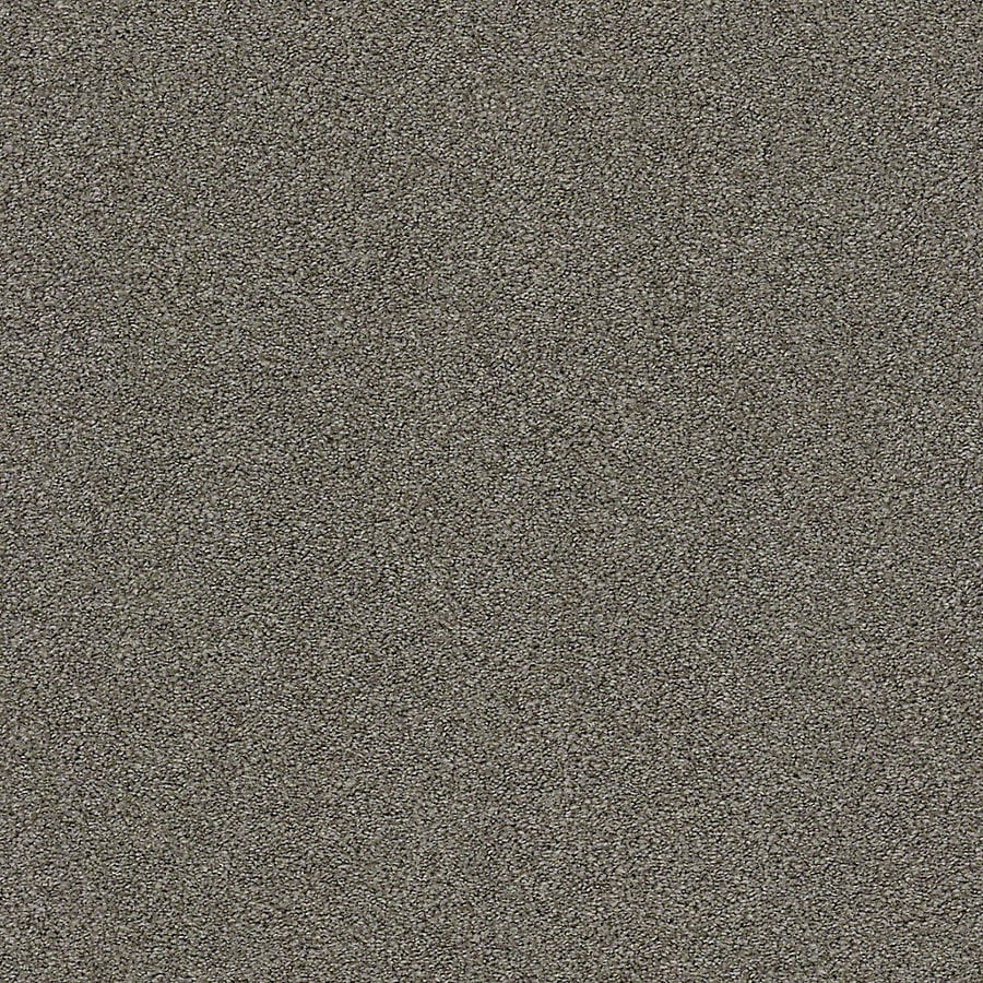 STAINMASTER LiveWell Breathe Easy II Wood Beam Textured Interior Carpet