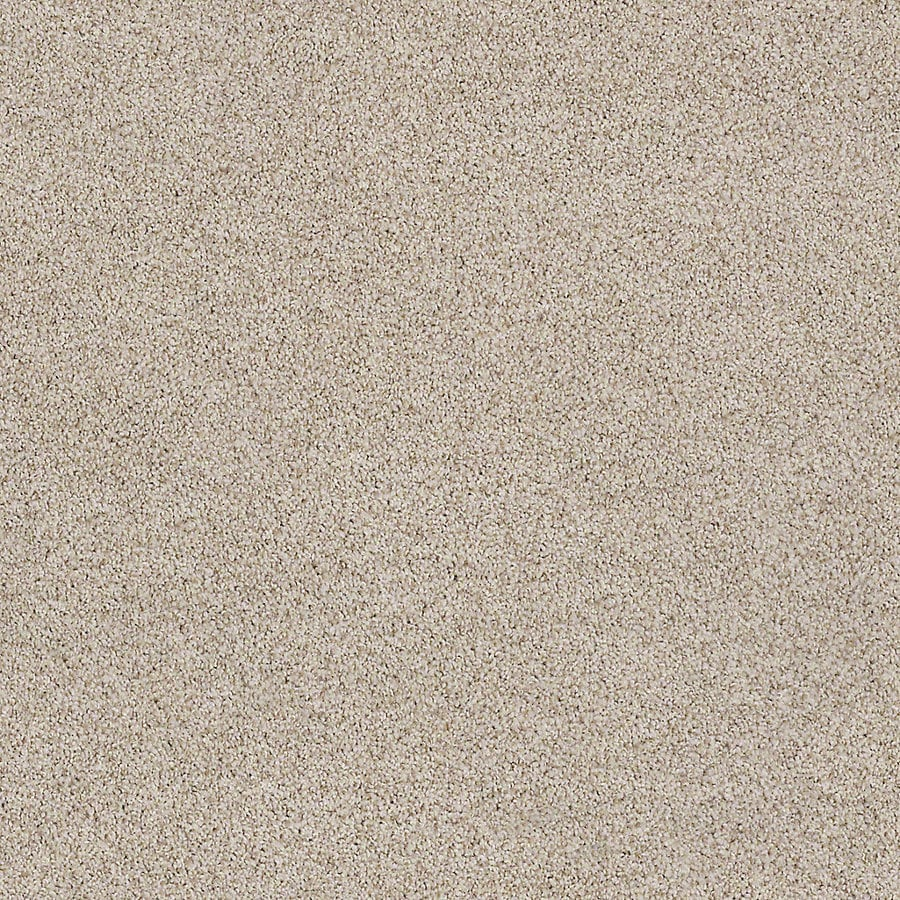 STAINMASTER LiveWell Vigorous I 12-ft W x Cut-to-Length Mummy Textured Interior Carpet