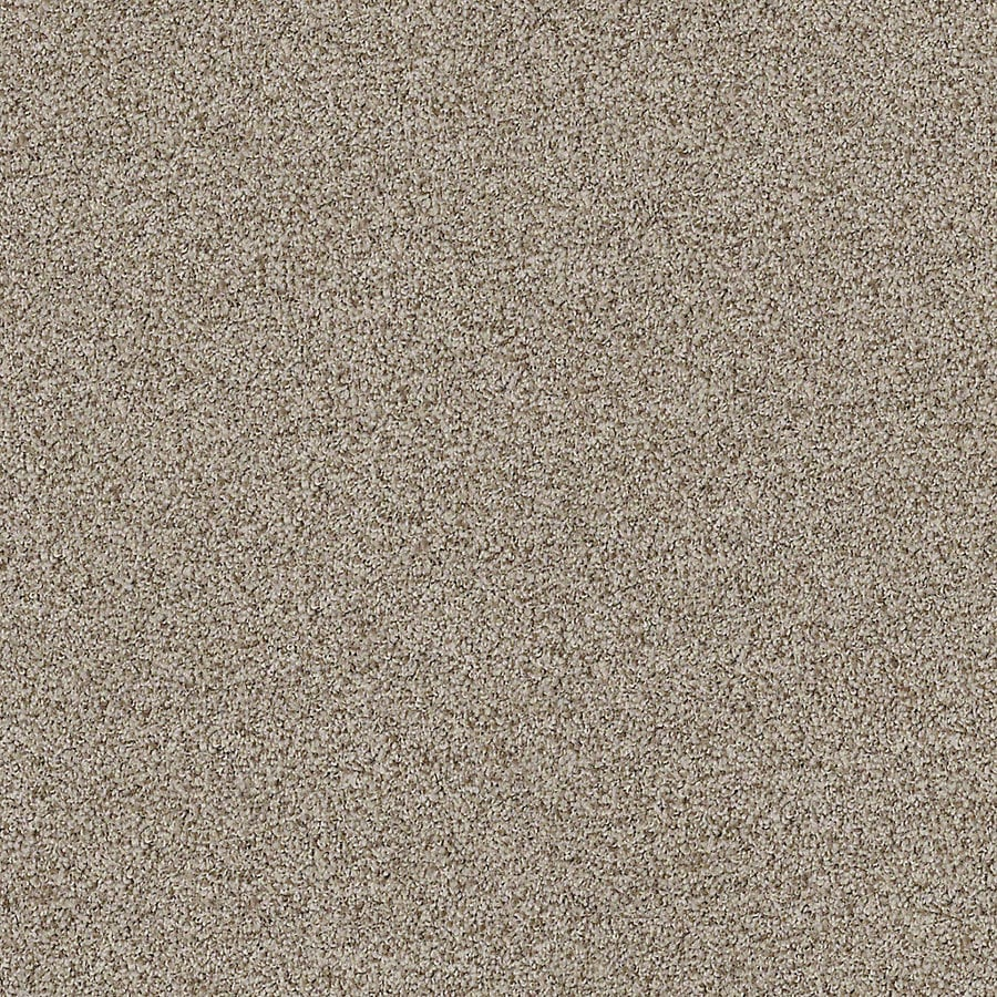 STAINMASTER LiveWell Vigorous I 12-ft W x Cut-to-Length Longhorn Textured Interior Carpet