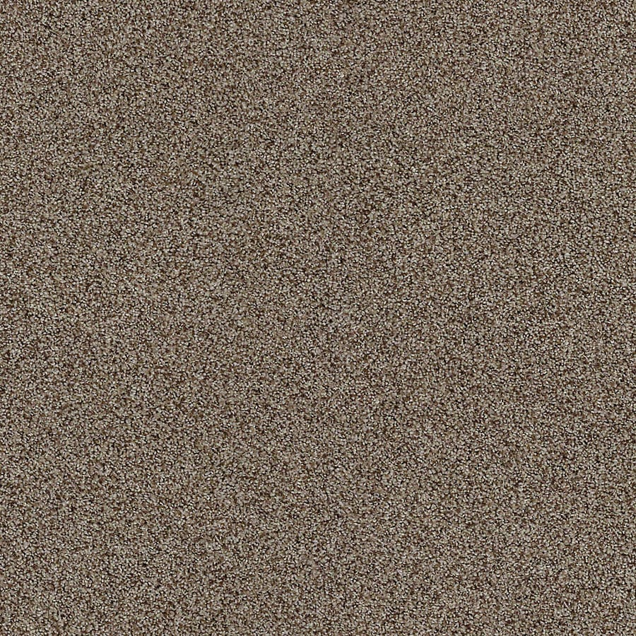 STAINMASTER LiveWell Vigorous I 12-ft W x Cut-to-Length Clove Textured Interior Carpet