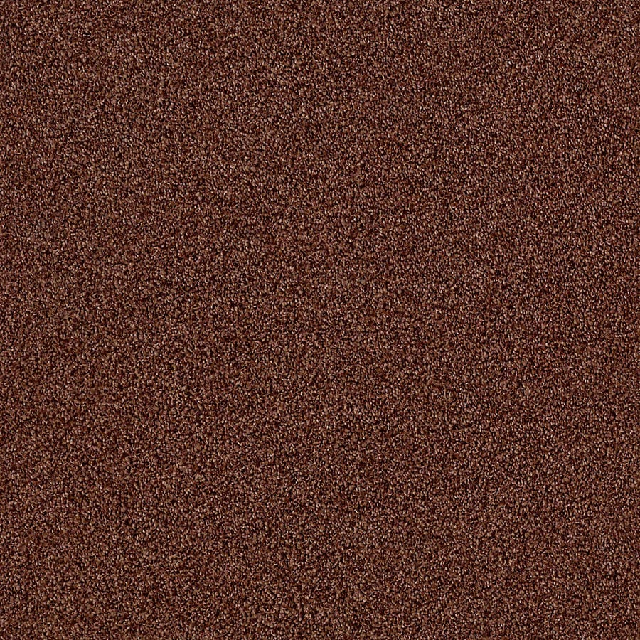 STAINMASTER LiveWell Vigorous II 12-ft W x Cut-to-Length Wooly Bear Textured Interior Carpet