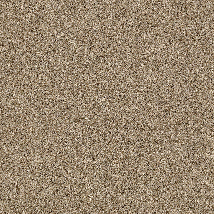 STAINMASTER LiveWell Vigorous II 12-ft W x Cut-to-Length Amaretto Textured Interior Carpet