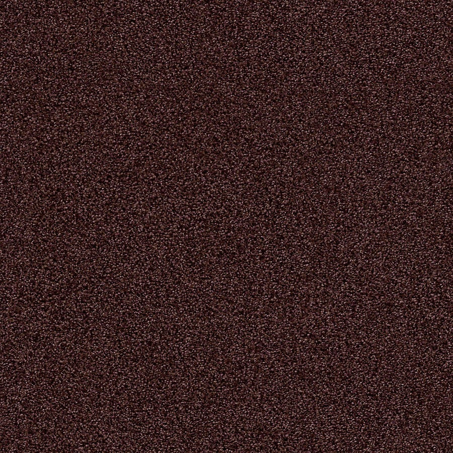 STAINMASTER LiveWell Vigorous II 12-ft W x Cut-to-Length Rare Jewel Textured Interior Carpet