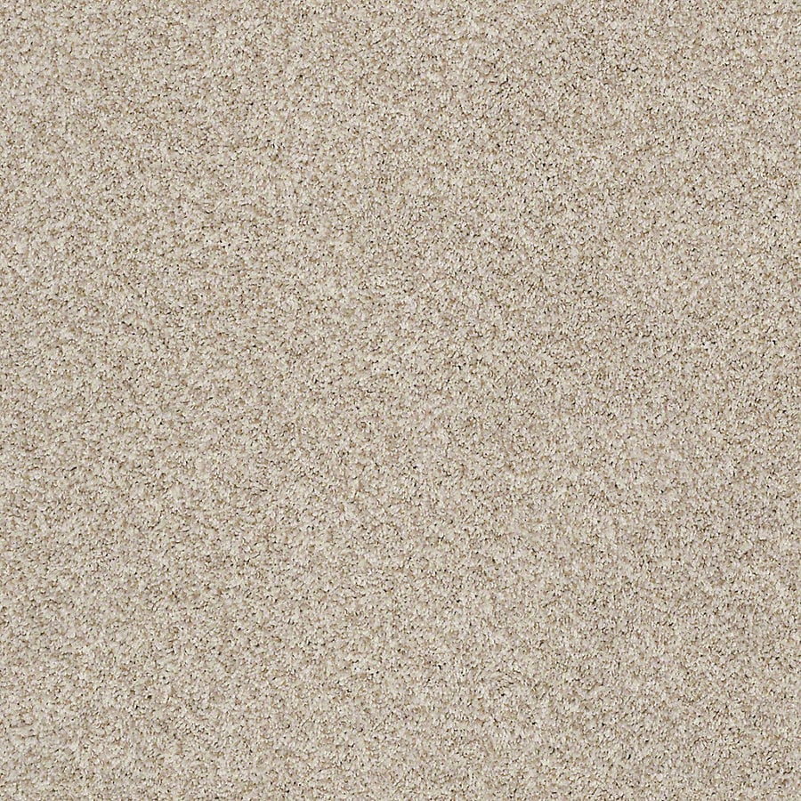 STAINMASTER LiveWell Robust I 12-ft W x Cut-to-Length Flawless Textured Interior Carpet