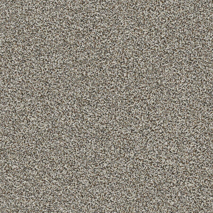 STAINMASTER LiveWell Robust I 12-ft W x Cut-to-Length City Loft Textured Interior Carpet