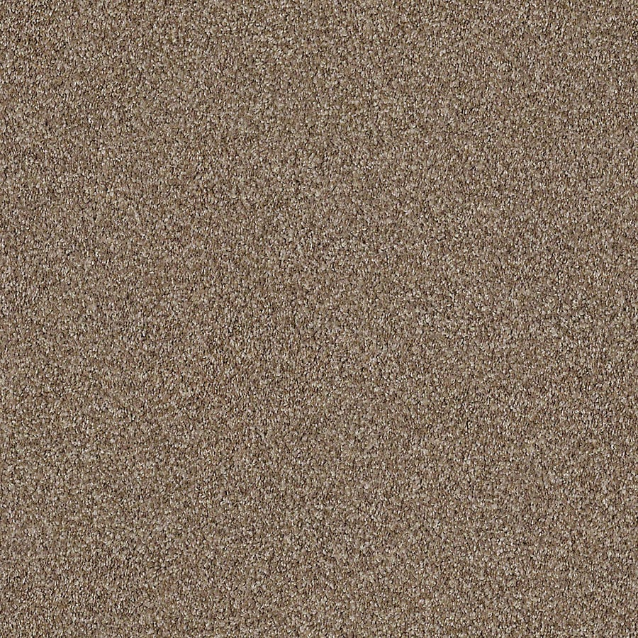 STAINMASTER LiveWell Robust I 12-ft W x Cut-to-Length Peaceful Textured Interior Carpet