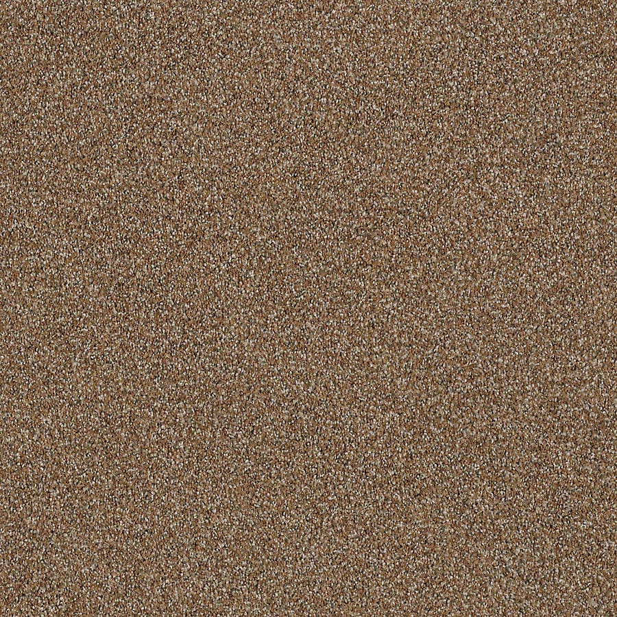 STAINMASTER LiveWell Robust I 12-ft W x Cut-to-Length Rustic Charm Textured Interior Carpet
