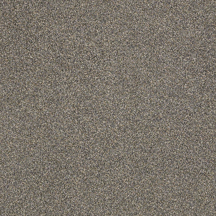 STAINMASTER LiveWell Robust I Thunder Textured Interior Carpet