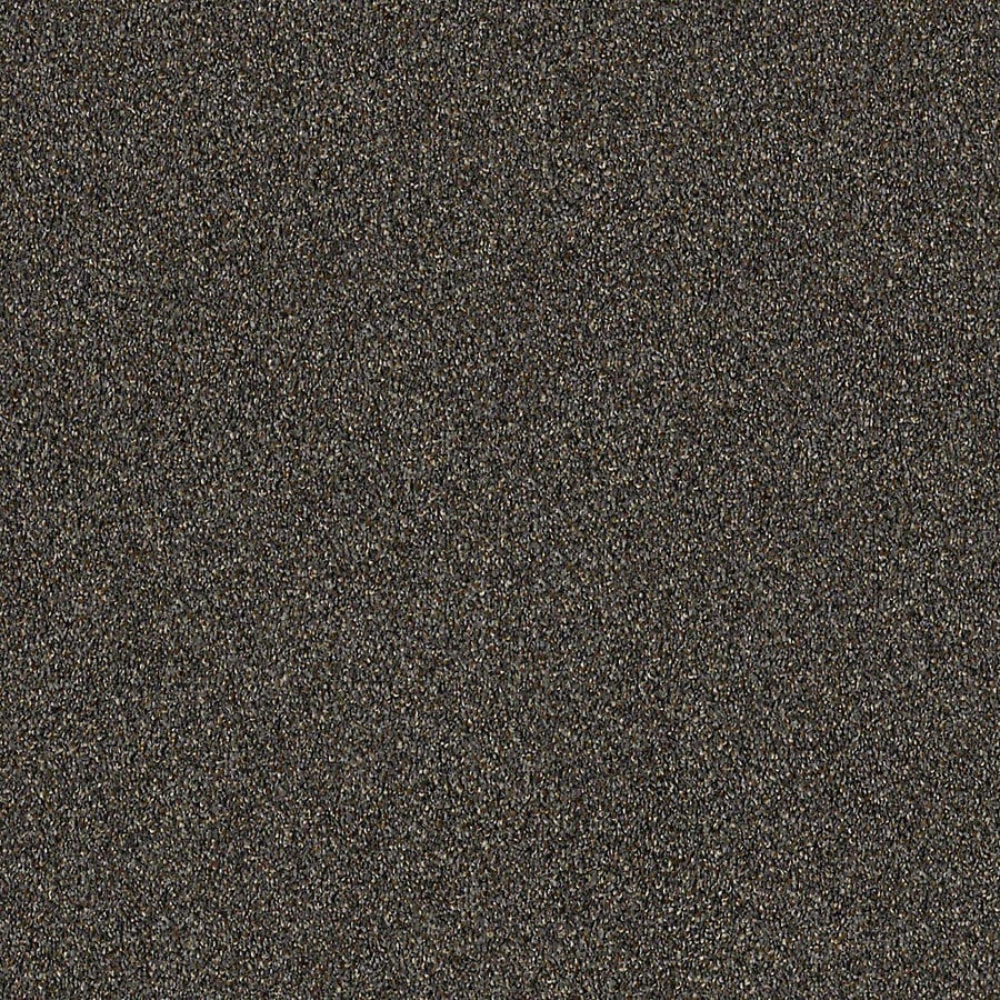 STAINMASTER LiveWell Robust I 12-ft W x Cut-to-Length Metropolitan Textured Interior Carpet