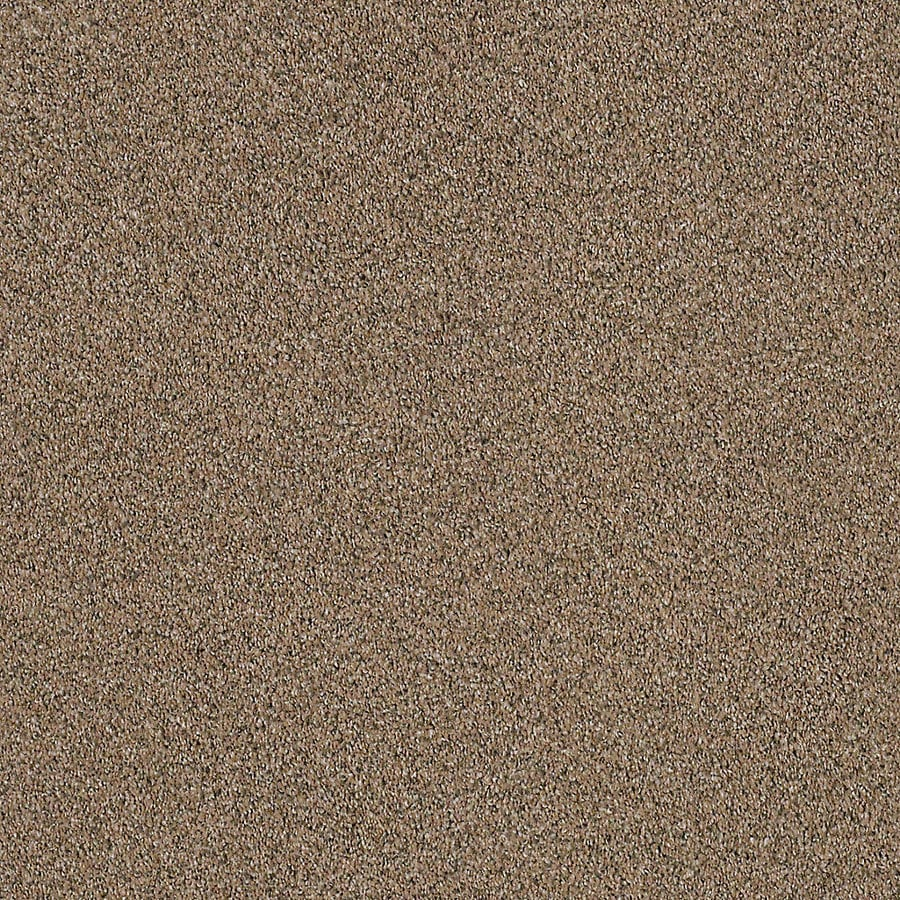 STAINMASTER LiveWell Robust I Retreat Textured Interior Carpet