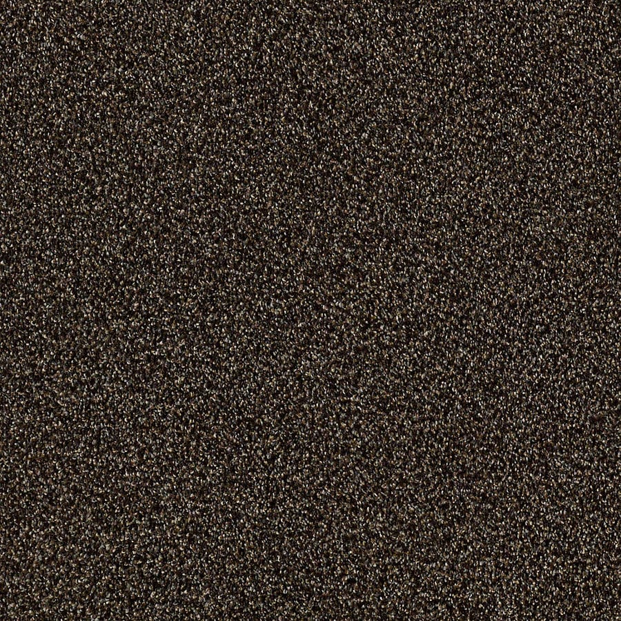 STAINMASTER LiveWell Robust I 12-ft W x Cut-to-Length Buckeye Textured Interior Carpet